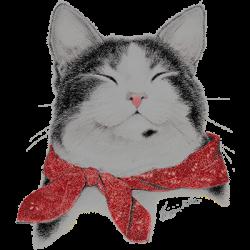 BANDANA CAT