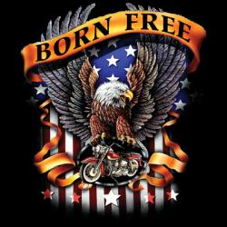 BORN FREE EAGLE