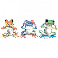 NO EVIL FROGS