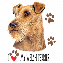 I HEART MY WELSH TERRIER