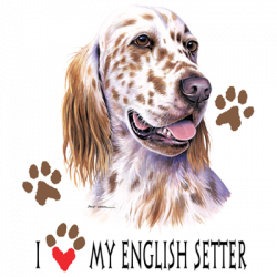 I HEART MY ENGLISH SETTER