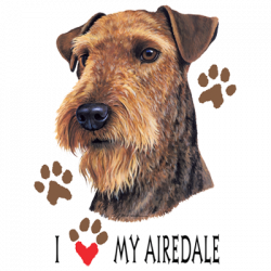 I HEART MY AIREDALE