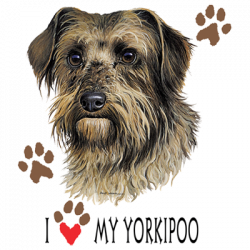 I HEART MY YORKIPOO