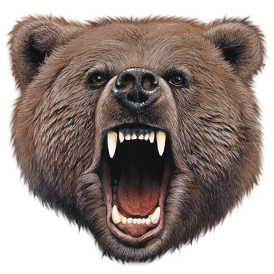 BEAR BITE