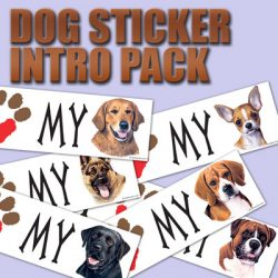DAVE WENZEL DOG BUMPER STICKER INTRO SAMPLE PACK