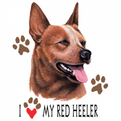 I HEART MY RED HEELER