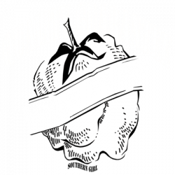 QUALITY GUARANTEE (COTTON)