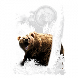 BEAR WILDERNESS