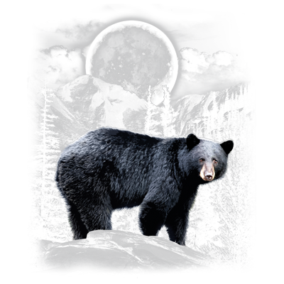 BLACK BEAR WILDERNESS
