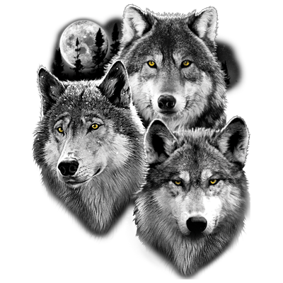 THREE WOLVES PORTRAIT
