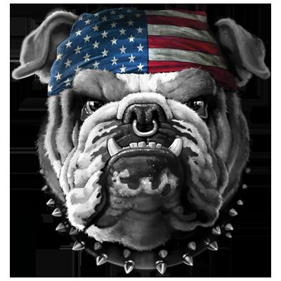 foto de American Bulldog Heat Transfers   T-shirt Transfers   Iron-on ...