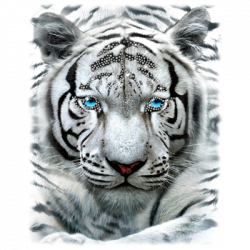 LARGE WHITE TIGER RHINESTONES