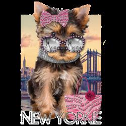 NEW YORKIE RHINESTONES