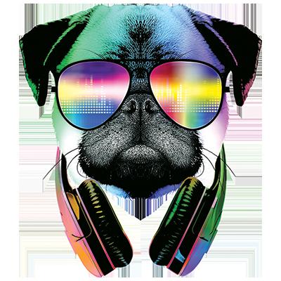 DJ PUG