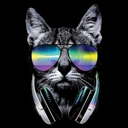 DJ CAT (Inventory)
