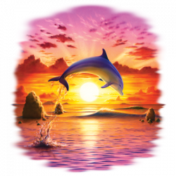 DAY OF THE DOPHIN- SUNSET