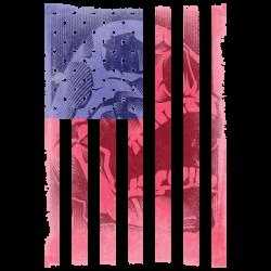 FLAG SKULL 1