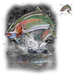 JUMPING RAINBOW TROUT W/CREST