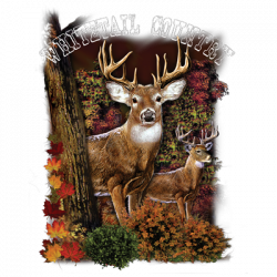 WHITETAIL DEER COUNTRY