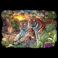 HIDDEN IMAGES TIGERS