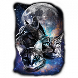SPACE CATS MOON