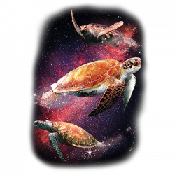SPACE TURTLES