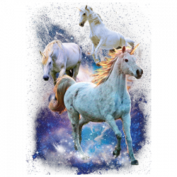 SPACE UNICORNS