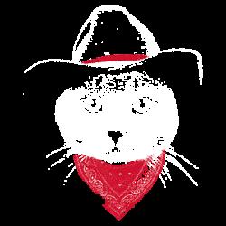 TEMP-COWBOY CAT