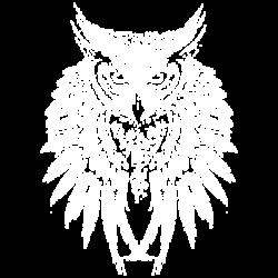 TEMP-OWL SKULL WINGS