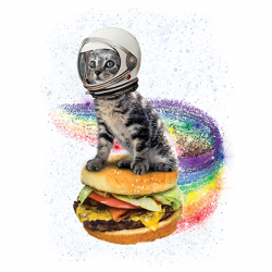 RAINDBOW BURGER CAT