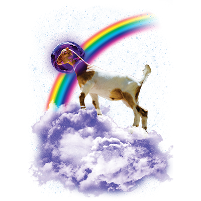 Rainbow Goat Heat Transfers T Shirt Transfers Iron On