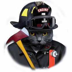 CAT FIREFIGHTER