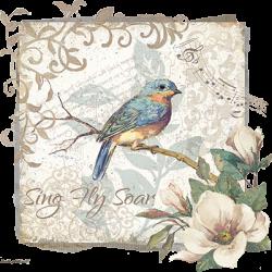 SING FLY SOAR