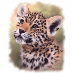 JAGUAR CUB PORTRAIT