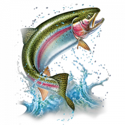 ACTION RAINBOW TROUT