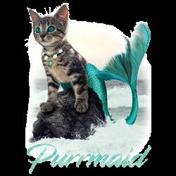 PURRMAID