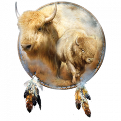 SPIRIT OF THE WHITE BUFFALO