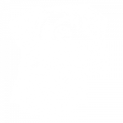SCRATCHBOARD LABRADOR RETRIEVER