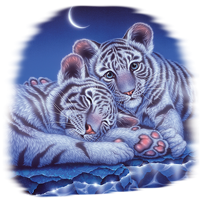 TWO BABIES - TIGER