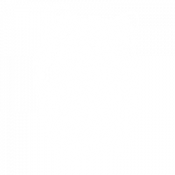 SCRATCHBOARD COLLIE