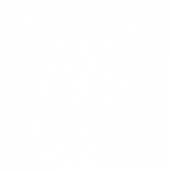 SCRATCHBOARD WELSH CORGI