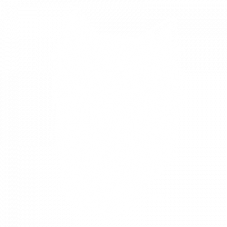 SCRATCHBOARD YORKSHIRE TERRIER