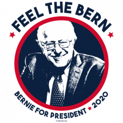 FEEL THE BERN 2020