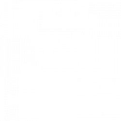 FEEL THE BERN WHITE