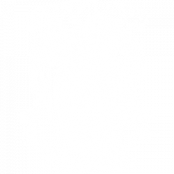 OUTLAW BIKE POSE
