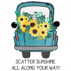 SCATTER SUNSHINE