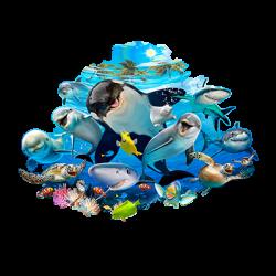 OCEAN SELFIE MURAL