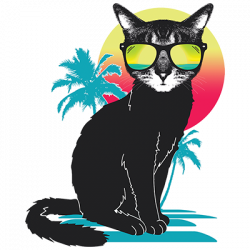 COOL SUMMER CAT