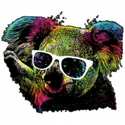 TECHNICOLOR KOALA BEAR
