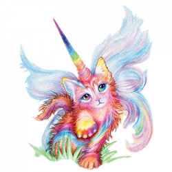RAINBOW CATICORN